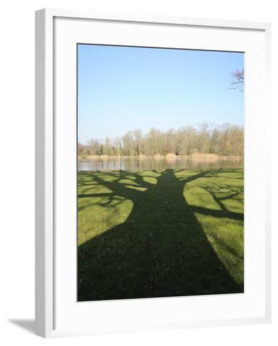 Shadow Cast by Large English Oak Tree (Quercus Robur) on Ornamental Lake, Corsham, England-Nick Upton-Framed Art Print