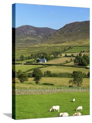 Luke's Mountain, Mourne Mountains, County Down, Ulster, Northern Ireland, United Kingdom, Europe-Jeremy Lightfoot-Stretched Canvas Print