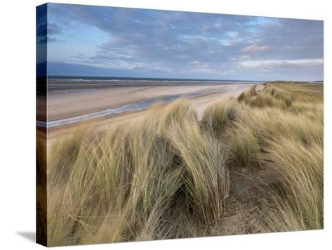 A Spring Evening at Holkham Bay, Norfolk, England-Jon Gibbs-Stretched Canvas Print