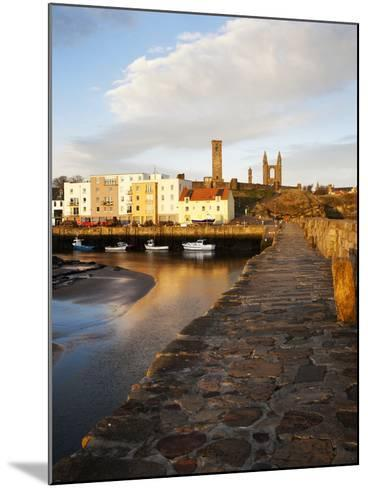 The Harbour at Dawn, St Andrews, Fife, Scotland-Mark Sunderland-Mounted Photographic Print
