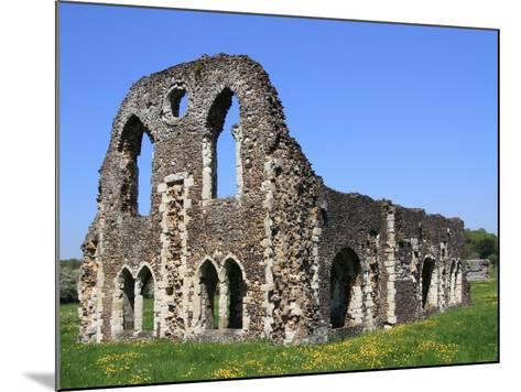 Waverley Abbey, Near Farnham, Surrey, England, United Kingdom, Europe-Rolf Richardson-Mounted Photographic Print