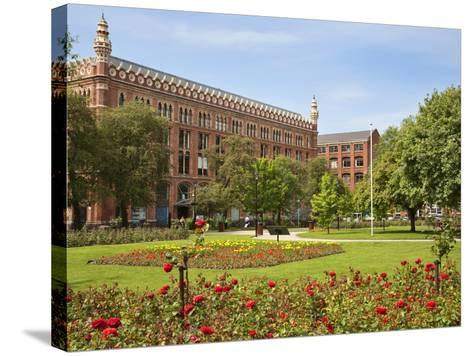 Roses in Bloom in Park Square, Leeds, West Yorkshire, Yorkshire, England, United Kingdom, Europe-Mark Sunderland-Stretched Canvas Print