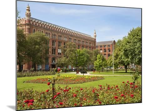 Roses in Bloom in Park Square, Leeds, West Yorkshire, Yorkshire, England, United Kingdom, Europe-Mark Sunderland-Mounted Photographic Print