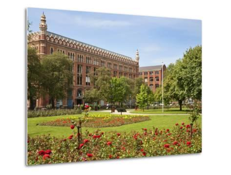 Roses in Bloom in Park Square, Leeds, West Yorkshire, Yorkshire, England, United Kingdom, Europe-Mark Sunderland-Metal Print