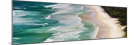 Panoramic Photo of Surfers Heading Out to Surf on Tallow Beach at Cape Byron Bay, Australia-Matthew Williams-Ellis-Mounted Photographic Print