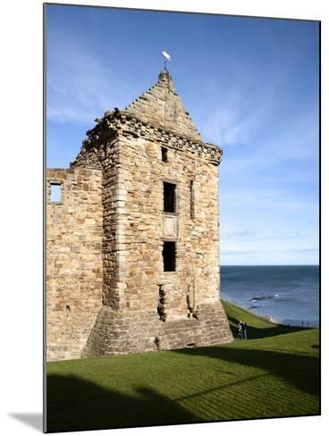 St Andrews Castle, St Andrews, Fife, Scotland-Mark Sunderland-Mounted Photographic Print