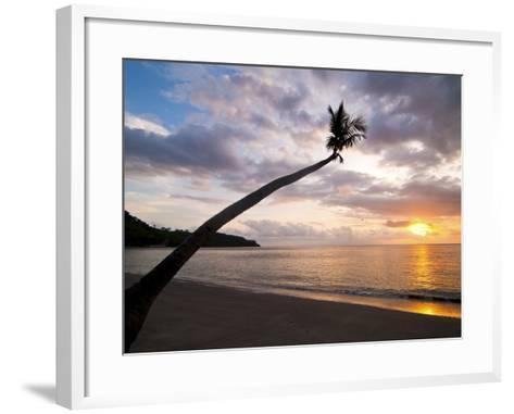 Overhanging Palm Tree at Nippah Beach at Sunset, Lombok Island, Indonesia, Southeast Asia-Matthew Williams-Ellis-Framed Art Print