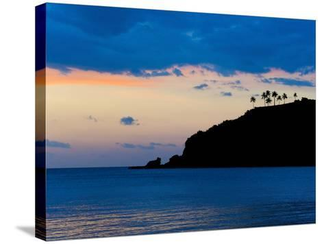 Silhouette of Palm Trees on a Cliff at Sunset, Nippah Beach, Lombok, Indonesia, Southeast Asia-Matthew Williams-Ellis-Stretched Canvas Print