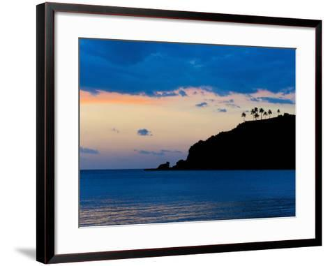 Silhouette of Palm Trees on a Cliff at Sunset, Nippah Beach, Lombok, Indonesia, Southeast Asia-Matthew Williams-Ellis-Framed Art Print