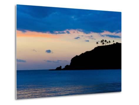 Silhouette of Palm Trees on a Cliff at Sunset, Nippah Beach, Lombok, Indonesia, Southeast Asia-Matthew Williams-Ellis-Metal Print