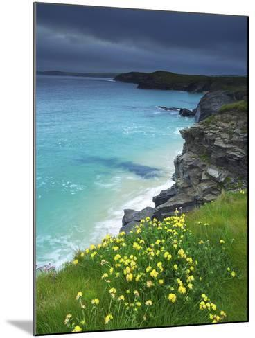 Mother Ivey's Bay, Padstow, Cornwall, England, United Kingdom, Europe-Jeremy Lightfoot-Mounted Photographic Print
