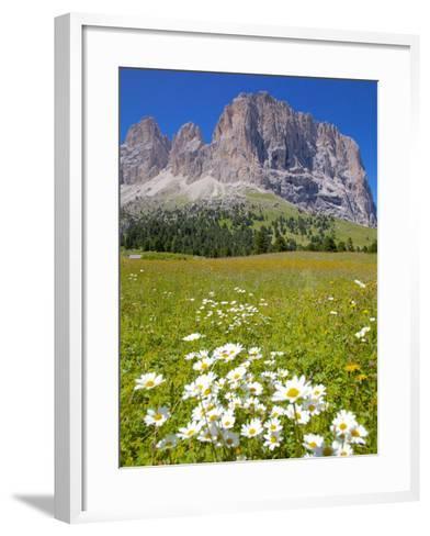 Sassolungo Group and Daisies, Sella Pass, Trento and Bolzano Provinces, Italian Dolomites, Italy-Frank Fell-Framed Art Print