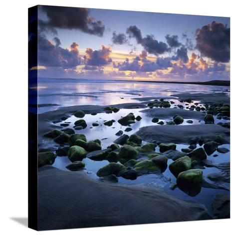 Sunset over Rock Pool, Strandhill, County Sligo, Connacht, Republic of Ireland, Europe-Stuart Black-Stretched Canvas Print