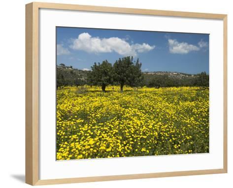 Spring Meadow, Near Limassol, Cyprus, Europe-Stuart Black-Framed Art Print