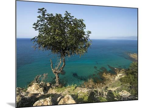 View Along Chrysochou Bay on North West Coast, Near Latsi, Cyprus, Mediterranean, Europe-Stuart Black-Mounted Photographic Print