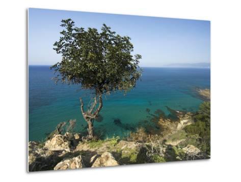 View Along Chrysochou Bay on North West Coast, Near Latsi, Cyprus, Mediterranean, Europe-Stuart Black-Metal Print