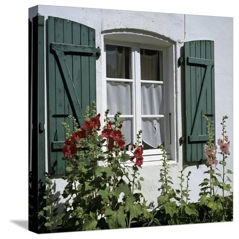 Typical Scene of Shuttered Windows and Hollyhocks, St. Martin, Ile de Re, Poitou-Charentes, France-Stuart Black-Stretched Canvas Print