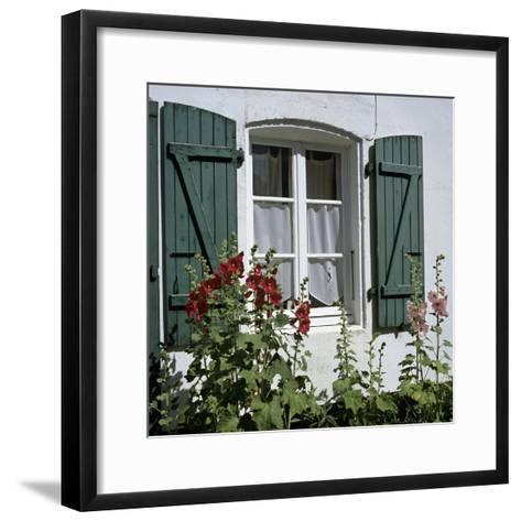 Typical Scene of Shuttered Windows and Hollyhocks, St. Martin, Ile de Re, Poitou-Charentes, France-Stuart Black-Framed Art Print