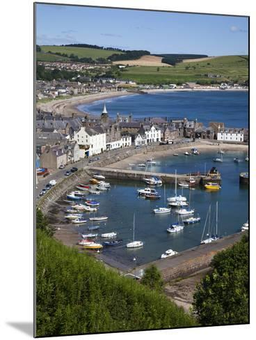 Stonehaven Harbour and Bay from Harbour View, Stonehaven, Aberdeenshire, Scotland, UK, Europe-Mark Sunderland-Mounted Photographic Print