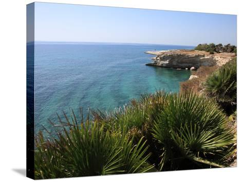 Coast Near Cassibile, Siracusa Province, Sicily, Italy, Mediterranean, Europe-Vincenzo Lombardo-Stretched Canvas Print