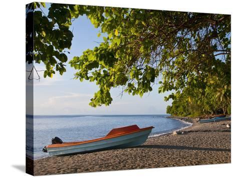 Beach on Savo Island, Solomon Islands, Pacific-Michael Runkel-Stretched Canvas Print