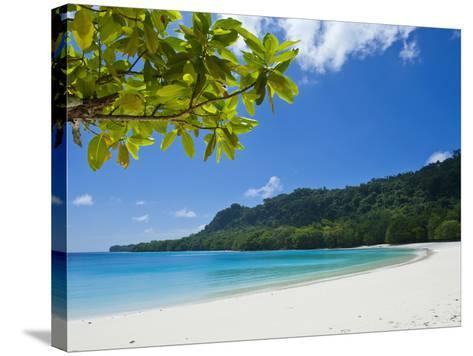 Turquoise Water and White Sand at Champagne Beach, Island of Espiritu Santo, Vanuatu, South Pacific-Michael Runkel-Stretched Canvas Print