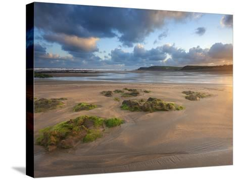 Early Morning, Widemouth Bay, Cornwall, England, United Kingdom, Europe-Chris Hepburn-Stretched Canvas Print