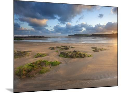 Early Morning, Widemouth Bay, Cornwall, England, United Kingdom, Europe-Chris Hepburn-Mounted Photographic Print