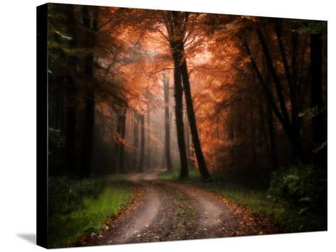 In My Dreams-Philippe Manguin-Stretched Canvas Print