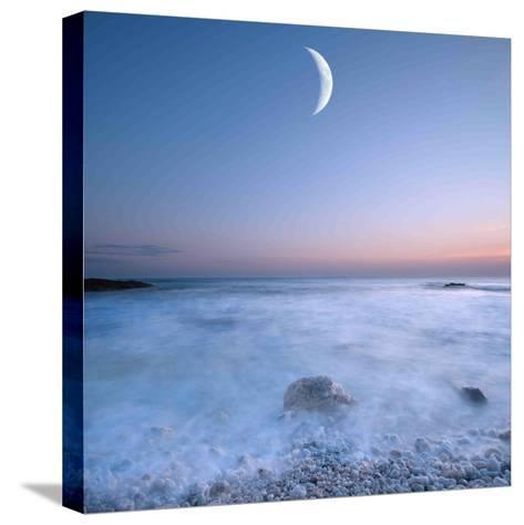 Dialogue-Philippe Sainte-Laudy-Stretched Canvas Print