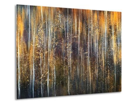 An Autumn Song-Ursula Abresch-Metal Print
