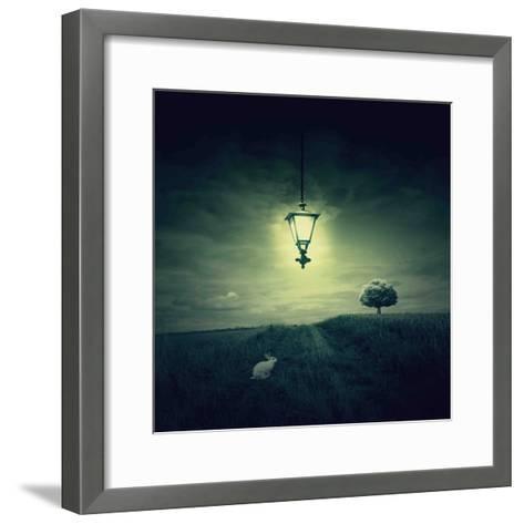 Follow the White Rabbit-Philippe Sainte-Laudy-Framed Art Print