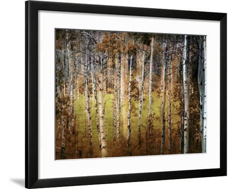 Crunchy-Ursula Abresch-Framed Art Print