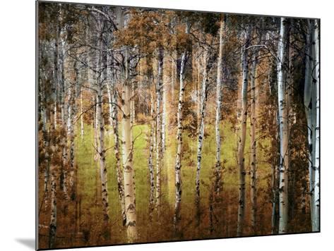 Crunchy-Ursula Abresch-Mounted Photographic Print