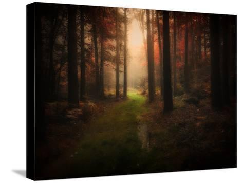 Red Autumn-Philippe Manguin-Stretched Canvas Print