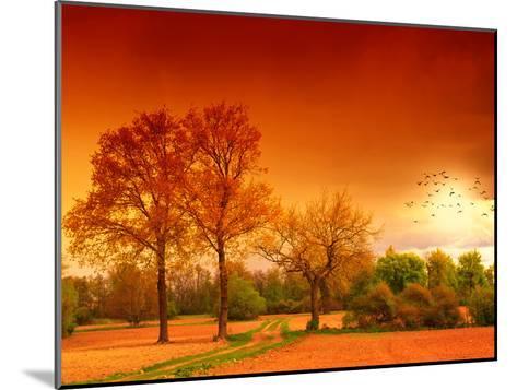Orange World-Philippe Sainte-Laudy-Mounted Photographic Print