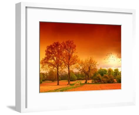 Orange World-Philippe Sainte-Laudy-Framed Art Print