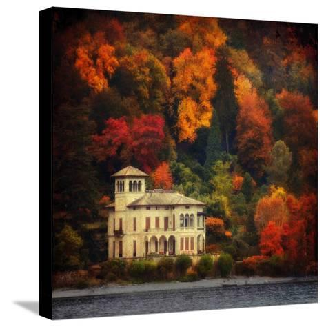 Autumn in My Garden-Philippe Sainte-Laudy-Stretched Canvas Print