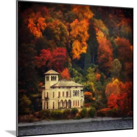 Autumn in My Garden-Philippe Sainte-Laudy-Mounted Photographic Print
