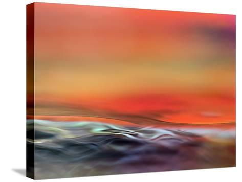 Firewater-Ursula Abresch-Stretched Canvas Print