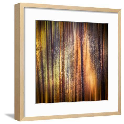 Autumn Walk-Ursula Abresch-Framed Art Print