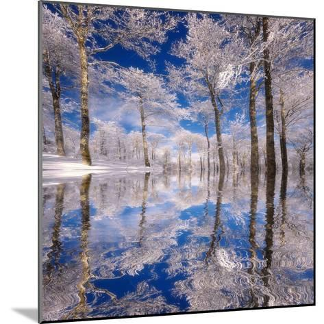 Dream in Blue-Philippe Sainte-Laudy-Mounted Photographic Print