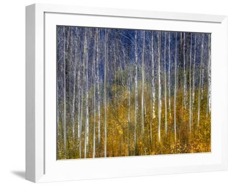 Lady Sings the Blues-Ursula Abresch-Framed Art Print