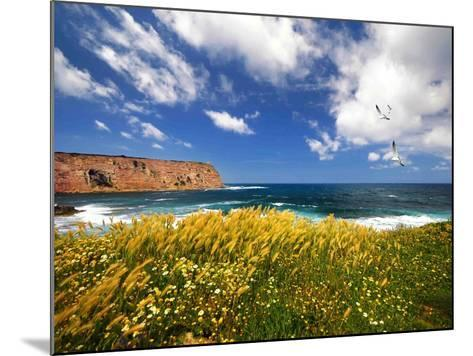 Winds from the Sea-Philippe Sainte-Laudy-Mounted Photographic Print
