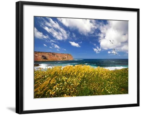 Winds from the Sea-Philippe Sainte-Laudy-Framed Art Print