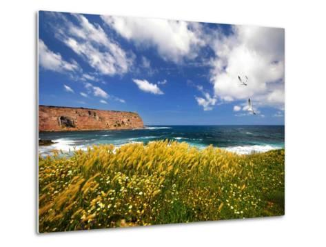 Winds from the Sea-Philippe Sainte-Laudy-Metal Print