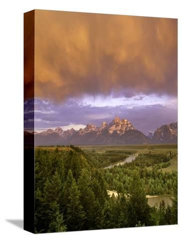 Dropping Low-Art Wolfe-Stretched Canvas Print