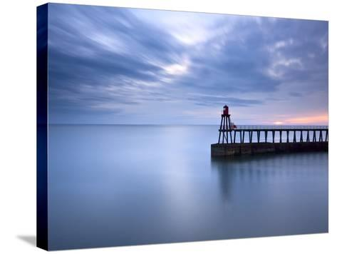 Sentinel-Doug Chinnery-Stretched Canvas Print