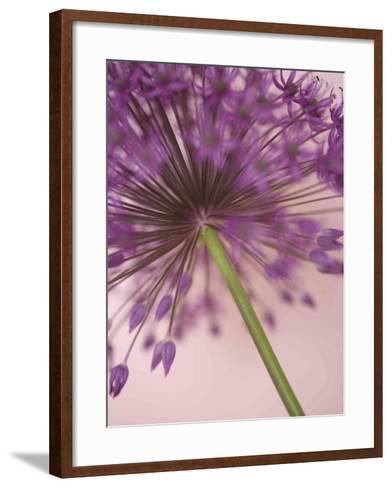 Purple Haze 5-Doug Chinnery-Framed Art Print