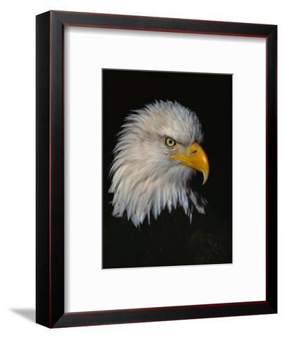 Posing-Art Wolfe-Framed Art Print